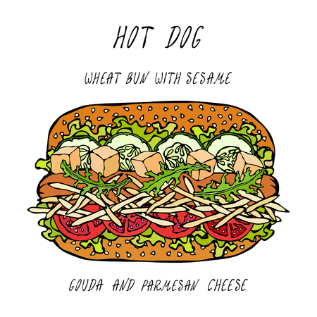 Hot Dog on a Wheat Bun with Sesame Seeds, with Gouda and Chedder Cheese, Tomato, Lettuce Salad. Fast Food Collection. Realistic Hand Drawn High Quality Vector Illustration. Doodle Style Illustration