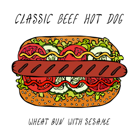 Classic Grill Beef Hot Dog on a Sesame Bun with Lettuce Salad, Tomato, Cucumber, Mustard, Ketchup. Street Fast Food Collection. Realistic Hand Drawn High Quality Vector Illustration. Doodle Style