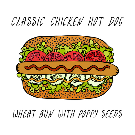 Classic Chicken Hot Dog on a Sesame Bun with Lettuce Salad, Tomato, Cucumber, Mustard, Ketchup. Street Fast Food Collection. Realistic Hand Drawn High Quality Vector Illustration. Doodle Style