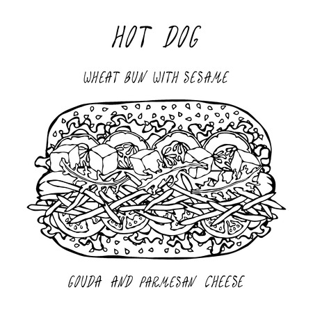 Hot Dog on a Wheat Bun with Sesame Seeds, with Gouda and Chedder Cheese, Tomato, Lettuce Salad. Fast Food Collection. Realistic Hand Drawn High Quality Vector Illustration. Doodle Style Foto de archivo - 114947379