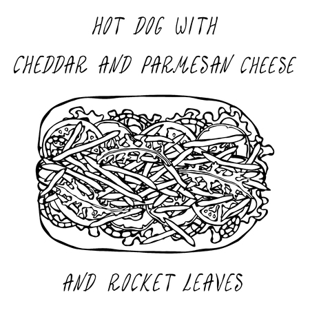 Hot Dog with Cheddar and Parmesan Cheese, Rocket, Lettuce Salad, Tomato, Cucumber, Onion Rings. Fast Food Collection. Realistic Hand Drawn High Quality Vector Illustration. Doodle Style
