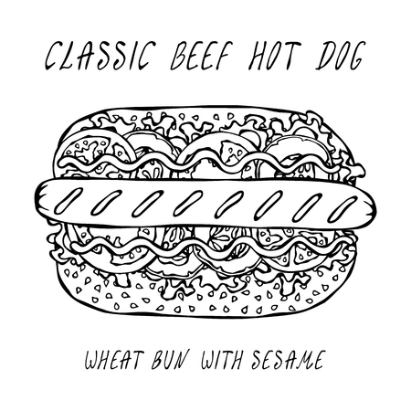 Classic Grill Beef Hot Dog on a Sesame Bun with Lettuce Salad, Tomato, Cucumber, Mustard, Ketchup. Street Fast Food Collection. Realistic Hand Drawn High Quality Vector Illustration. Doodle Style Foto de archivo - 114947386