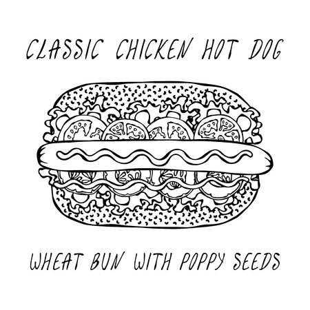 Classic Chicken Hot Dog on a Sesame Bun with Lettuce Salad, Tomato, Cucumber, Mustard, Ketchup. Street Fast Food Collection. Realistic Hand Drawn High Quality Vector Illustration. Doodle Style Foto de archivo - 114947397