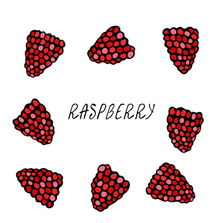 Fresh Raspberry Berries Set. Summer Harvest Collection. Realistic Hand Drawn High Quality Vector Illustration. Doodle Style
