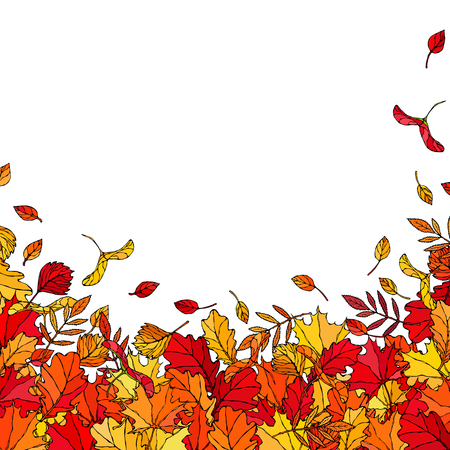 Autumn Background Layout Frame with Falling Leaves. Poster or Card. Maple Rowan, Oak, Hawthorn, Birch. Red, Orange and Yellow. Realistic Hand Drawn High Quality Vector Illustration. Doodle Style