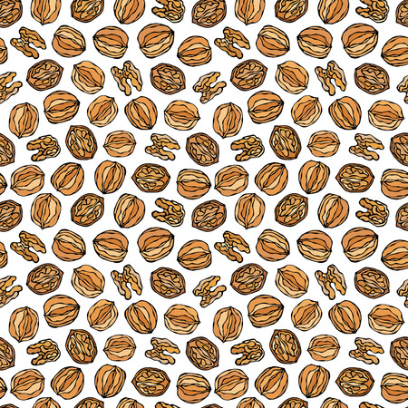 Walnut Seamless Endless Pattern. Whole and Peeled Walnuts. Autumn or Fall Harvest Collection. Realistic Hand Drawn High Quality Vector Illustration. Doodle Style
