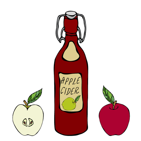 Apple Cider Glass Vintage Bottle. Red Apple Fruit. Home Brew. Autumn or Fall Vegetable Harvest Collection. Realistic Hand Drawn High Quality Vector Illustration. Doodle Style Ilustracja