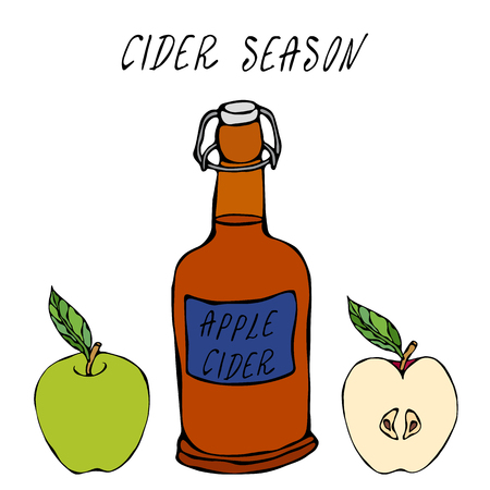 Botella Vintage de vidrio de sidra de manzana. Fruta de manzana roja. Elaboración casera. Colección de cosecha de hortalizas de otoño o otoño. Ilustración vectorial de alta calidad dibujada a mano realista. Estilo Doodle