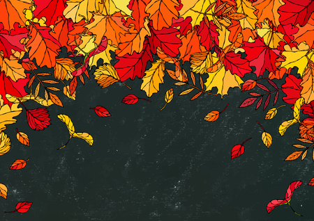 Black Board. Autumn Background Layout Frame with Falling Leaves. Maple Rowan, Oak, Hawthorn, Birch. Red, Orange and Yellow. Realistic Hand Drawn High Quality Vector Illustration. Doodle Style