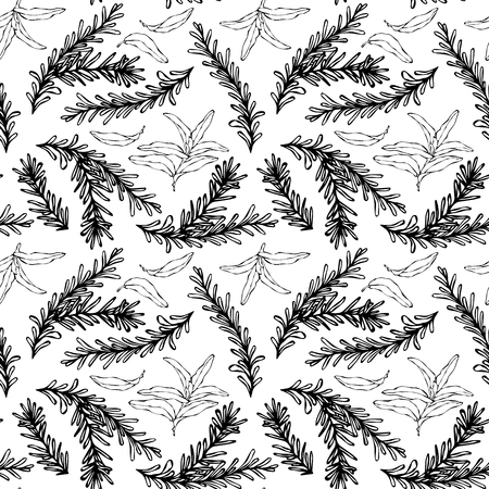 Seamless Endless Pattern of Rosemary Branch and Sage. Background with Aromatic Healing Herb. Steak Meat Spice. Hand Drawn Illustration. Savoyar Doodle Style
