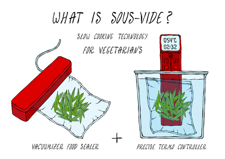What is Sous-Vide. Slow Cooking Technology. Green Beans. For Vegetarians. Vacuumizer Food Sealer. Chief Cuisine Collection. EPS10 Vector. Hand Drawn Doodle Style Realistic Illustration Foto de archivo - 126959101