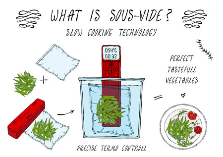 What is Sous-Vide. Slow Cooking Technology. Green Beans. For Vegetarians. Vacuumizer Food Sealer. Chief Cuisine Collection. EPS10 Vector. Hand Drawn Doodle Style Realistic Illustration Foto de archivo - 126941826