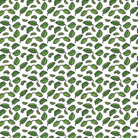 Herbal Seamless Endless Pattern of mint. Wrapping paper, fabric print, wallpaper of Green floral branches. Kitchen Collection. EPS10 Vector. Hand Drawn Doodle Style Realistic Illustration.