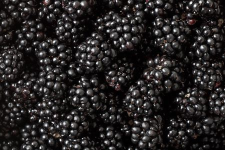 zoomed in: Zoomed in on blackberries all over Stock Photo