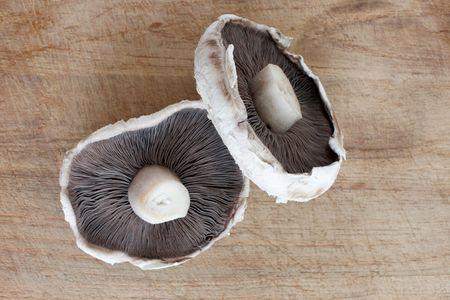 A big flat mushroom on a wooden surface photo