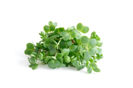 Water cress isolated on white Stock Photo - 6115794