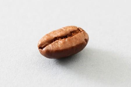 Coffee bean photo
