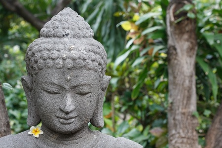 buddhist meditation: Buddha figure