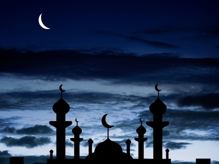 Half moon and a mosque Stock Photo - 8535036