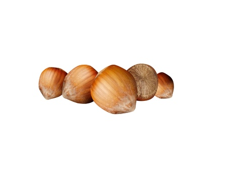 nutshells: Nutshells Stock Photo