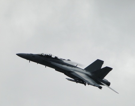 jet fighter: USA Airforce F-18
