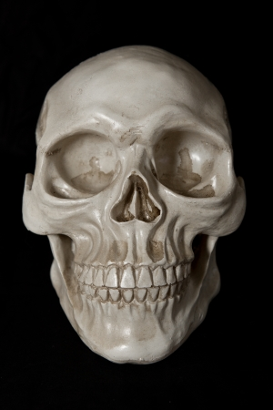 eye socket: Full Artificial Human Skull  Stock Photo