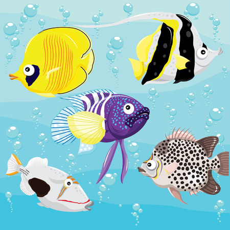 tropical fish: Tropical Fish Set