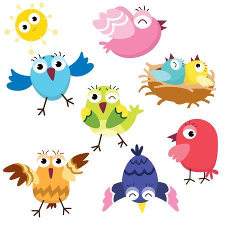 pajaro caricatura: Aves