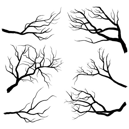 halloween tree: Branch Silhouettes