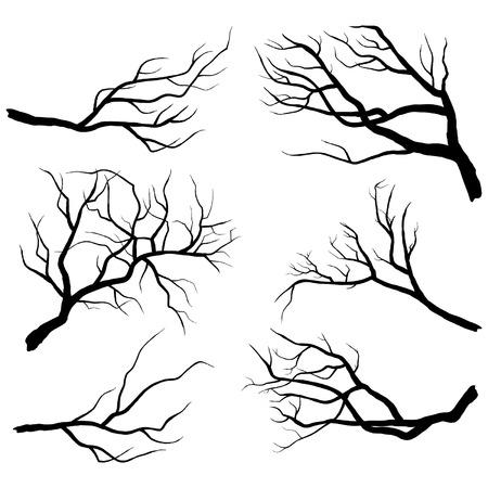 ¡rboles con pajaros: Siluetas Branch Vectores