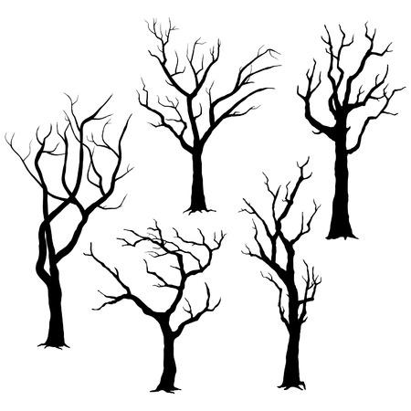 arboles secos: Siluetas de árboles Vectores