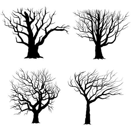 arboles secos: Siluetas de �rboles Vectores