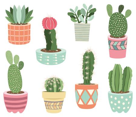 Cactuses potted plants Elements
