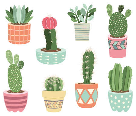 Cactuses potted plants Elements