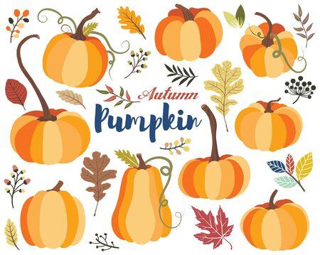Autumn Pumpkin Harvest Collections Set