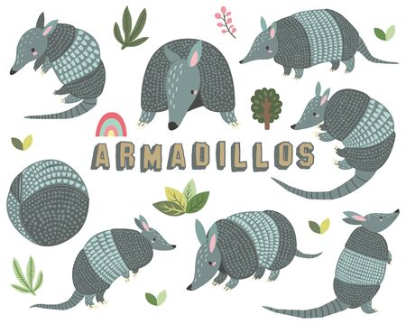 Cute Little Armadillos Collections Set 일러스트
