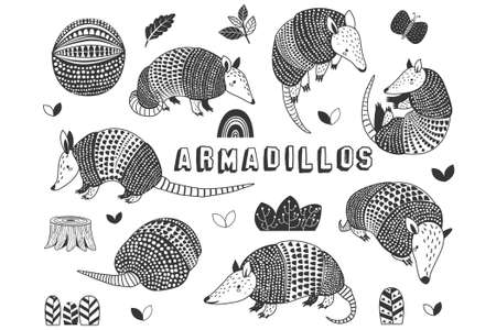 Doodle Cute Little Armadillos Collections Set 일러스트