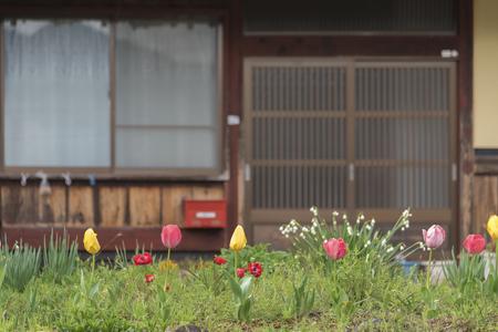 교토, 일본에서 농촌 지역에서 일본 뒷마당 정원