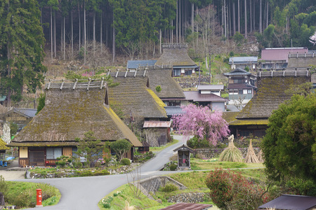 Rural landscape of Historical village Miyama in Kyoto, Japan
