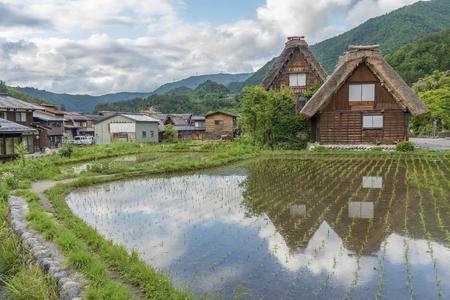 Rice field in Historical village of Shirakawa-go. Shirakawa-go is one of Japan, located in Gifu Prefecture, Japan. 写真素材 - 100727813