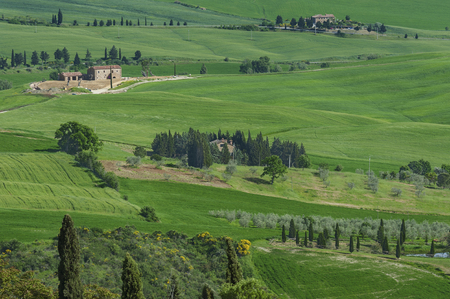Idyllic view of rural landscape in Tuscany, Italy Editorial