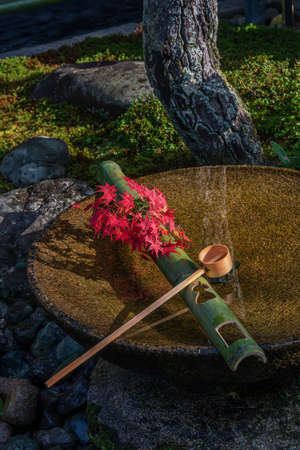 Tsukubai Water Fountain in Japanese Garden in Zuiganzan Enkouji Temple, Kyoto, Japan in autumn. With red maple leaves on the washbasin.