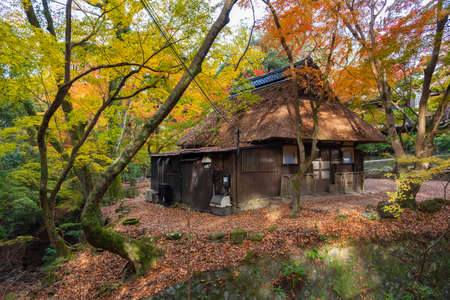 Idyllic landscape of Nara, Japan in autumn season