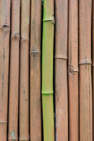 Closeup of painted bamboo fence background