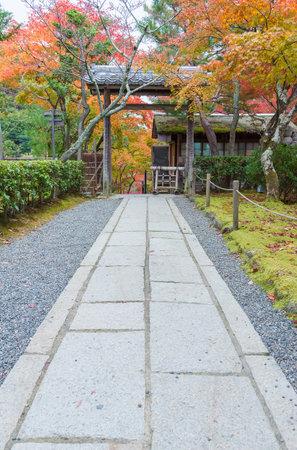 idyllic landscape of Garden in Saga Toriimoto, Arashiyama, Kyoto, Japan in autumn season
