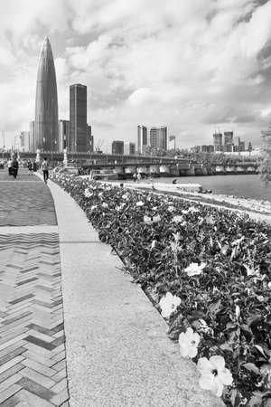 Skyline of downtown of Shenzhen City, China 版權商用圖片