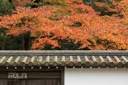 idyllic landscape of Kyoto, Japan in autumn season, The Japanese character means
