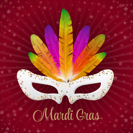 decoration decorative disguise: Mardi Gras vector mask with colorful feathers  isolated on purple with stars and rays.