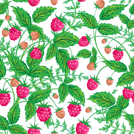sweet food: Seamless raspberry pattern. Cute hand drawing raspberry background. Vector illustration. For cards, invitations, wedding or baby shower albums, backgrounds, wallpapers, arts and scrapbooks.