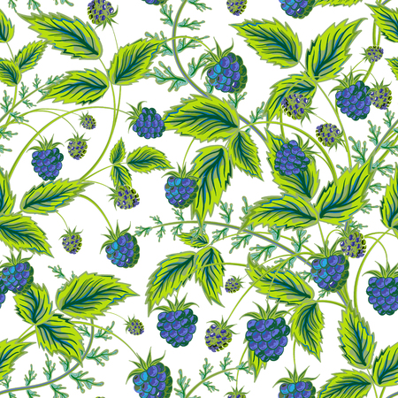foreshortening: Colored raspberries seamless pattern. Seamless pattern with colored hand draw graphic blue  raspberries and green leaves. Vector illustration. Illustration